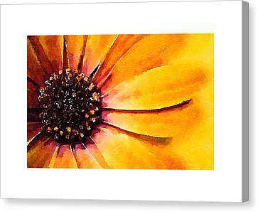Sunrise Canvas Print by Tears of Colors Gallery