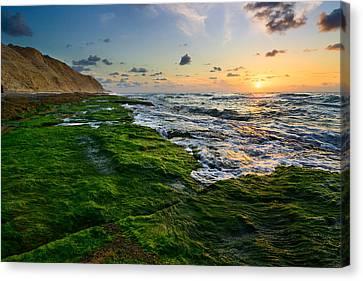 Sunset 01 Canvas Print by Yuri Peress