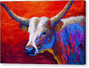Sunset Ablaze Canvas Print by Marion Rose