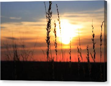 Sunset At Monument Hill Canvas Print by Toni Hopper