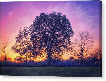 Sunset At Retzer Nature Center Canvas Print by Jennifer Rondinelli Reilly - Fine Art Photography