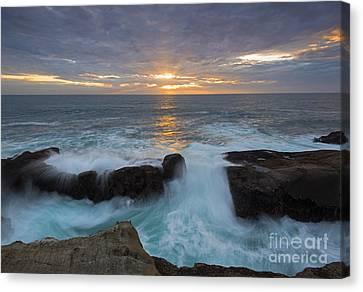 Sunset Breach Canvas Print by Mike Dawson
