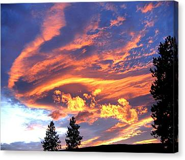 Sunset Extravaganza Canvas Print by Will Borden