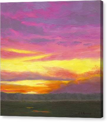 Sunset IIi Canvas Print by Elaine Farmer