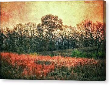 Sunset In Orange At Retzer Nature Center Canvas Print by Jennifer Rondinelli Reilly - Fine Art Photography