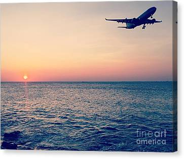 Sunset Landing Canvas Print by Jennifer Ansier