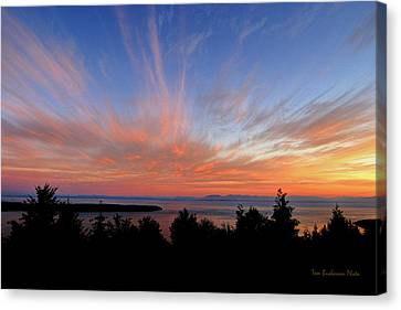 Sunset Over Cypress Canvas Print by Tom Buchanan