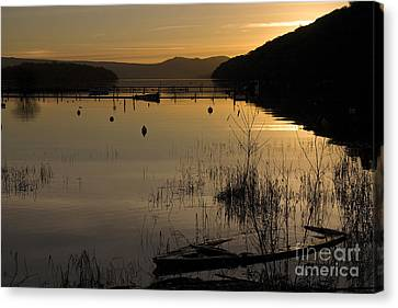 Sunset Over The Lake Canvas Print by Carole Lloyd