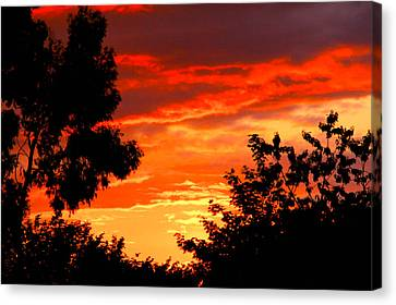 Sunset Sky Canvas Print by Duke Brito