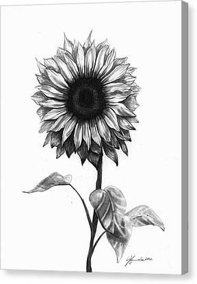 Sunshine Love Canvas Print by J Ferwerda