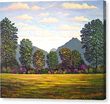 Sutter Buttes In Springtime Canvas Print by Frank Wilson
