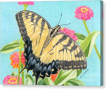 Swallowtail Butterfly And Zinnias Canvas Print by Sarah Batalka