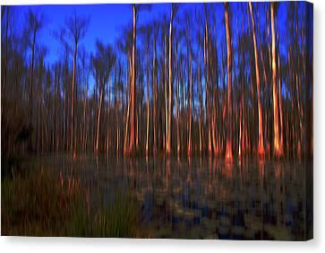 Swamp In Cypress Gardens Canvas Print by Susanne Van Hulst