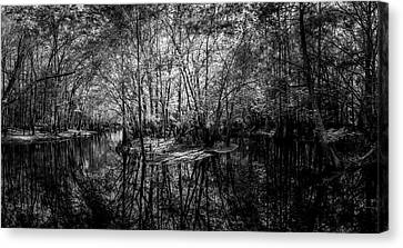 Swamp Island Canvas Print by Marvin Spates