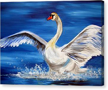 Swan Canvas Print by Cathy Jacobs