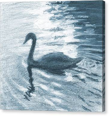 Swan Canvas Print by Sarah Parks