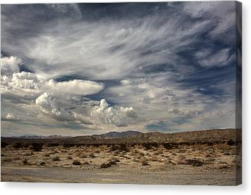 Sweeping Canvas Print by Laurie Search