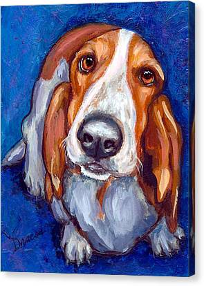 Sweet Basset Looking Up On Blue Canvas Print by Dottie Dracos