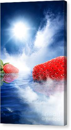 Sweet Escape Canvas Print by Jorgo Photography - Wall Art Gallery