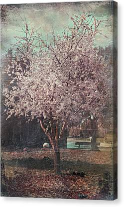 Sweet Kisses Under The Tree Canvas Print by Laurie Search