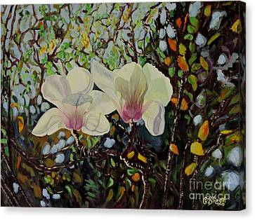 Sweet Magnolias Canvas Print by Caroline Street