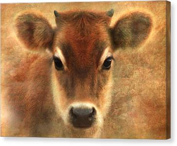 Sweet Sweet Baby Canvas Print by Trudi Simmonds