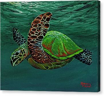 Swimming With Aloha Canvas Print by Darice Machel McGuire