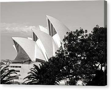 Sydney Opera House Black And White Canvas Print by Nicholas Blackwell
