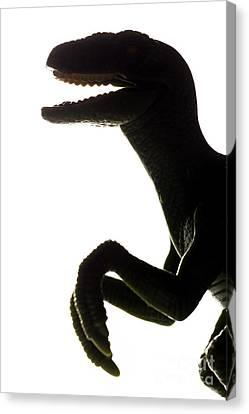 T-rex Dinosaur Toy Silhouette In Back Light Canvas Print by Michal Bednarek