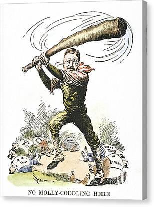 T. Roosevelt Cartoon, 1904 Canvas Print by Granger