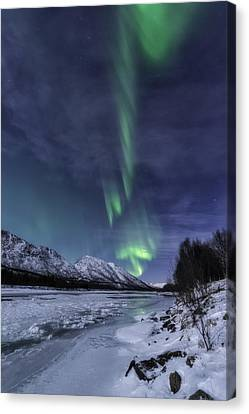 T Canvas Print by Tor-Ivar Naess