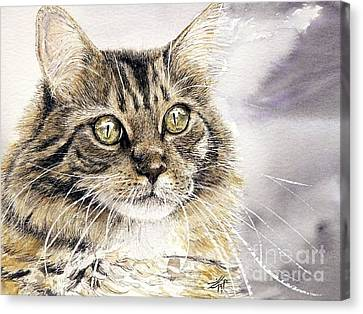 Tabby Cat Jellybean Canvas Print by Keran Sunaski Gilmore