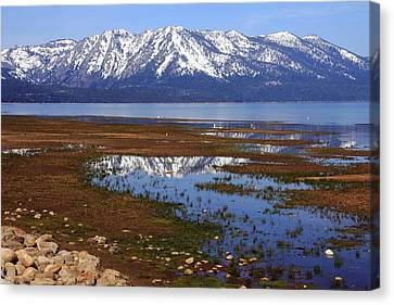 Tahoe Spring Reflection Canvas Print by Diane Zucker