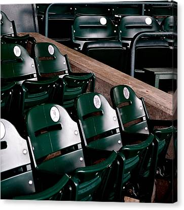 Take Me Out To The Ball Game Canvas Print by Michelle Calkins