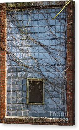 Taken Mary Leila Cotton Mill 1899 Canvas Print by Reid Callaway