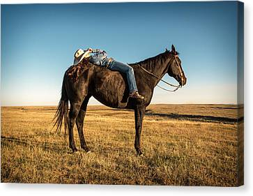 Taking A Snooze Canvas Print by Todd Klassy