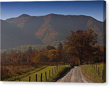 Taking A Walk Down Sparks Lane Canvas Print by Jonas Wingfield