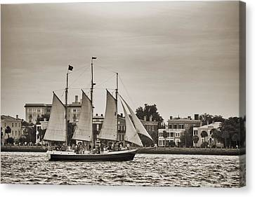 Tall Ship Schooner Pride Off The Historic Charleston Battery Canvas Print by Dustin K Ryan