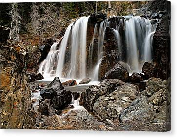 Tangle Falls Closeup 5 Canvas Print by Larry Ricker