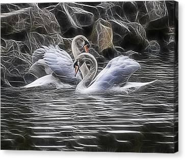 Tango Of The Swans Canvas Print by Joachim G Pinkawa