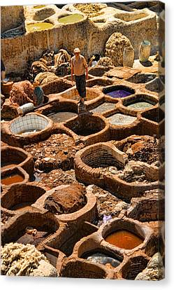 Tanneries Of Ancient Fes Morroco Canvas Print by David Smith