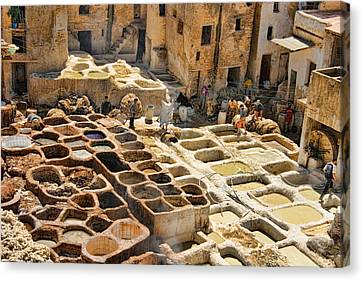 Tanneries Of Fes Morroco Canvas Print by David Smith