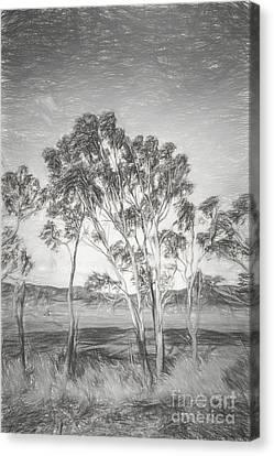 Tasmanian Countryside Illustration Canvas Print by Jorgo Photography - Wall Art Gallery