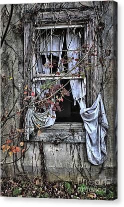 Tattered Curtain Fall '09 No.2 Canvas Print by Sari Sauls