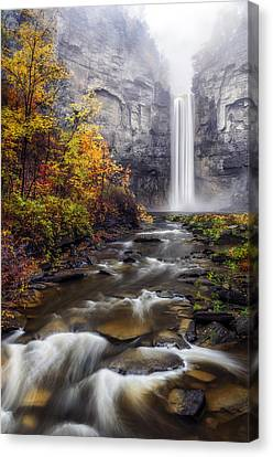Taughannock Fog Canvas Print by Mark Papke