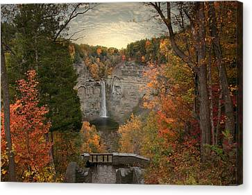 Taughannock Foliage Canvas Print by Jessica Jenney