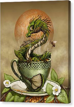 Tea Dragon Canvas Print by Stanley Morrison