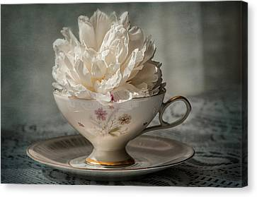 Tea Time Canvas Print by Maggie Terlecki