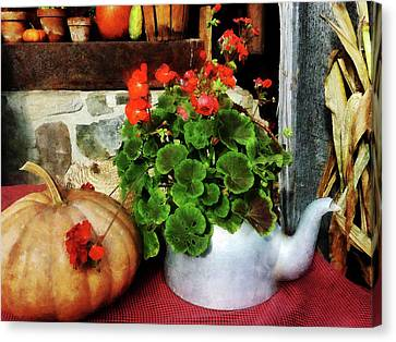 Teapot Filled With Geraniums Canvas Print by Susan Savad