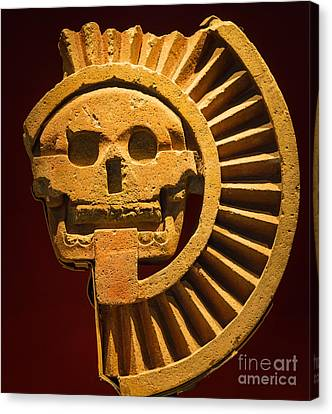Teotihuacan Skull Canvas Print by Inge Johnsson